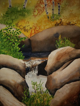 AVAILABLE. The Creek in Fall 10 x 13 watercolor in 16x20 frame $100