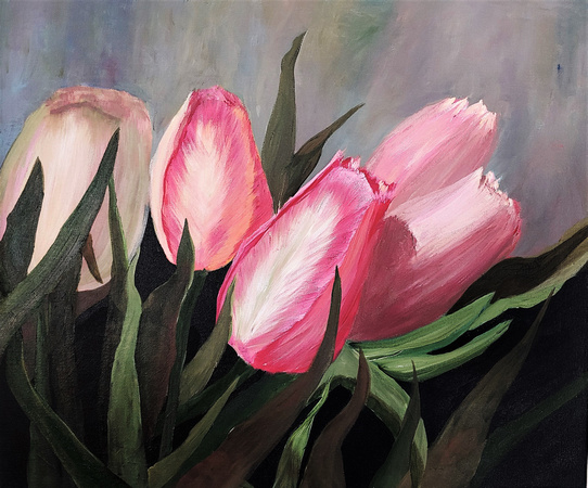 Available. Spring Tulips, on 20 x 24 stretched canvas $175