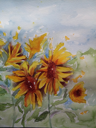 AVAILABLE. Sunflowers. Pen and watercolor. 8x10 in an 11x14 Mat $25
